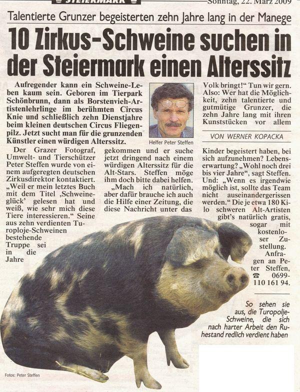 zirkusschweine.jpg